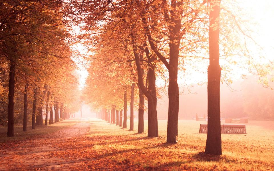 电脑壁纸 唯美意境壁纸 秋天的风景画高清壁纸下载   (7/13) 小箭头