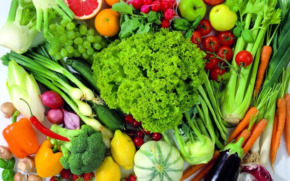 蔬菜对土壤肥力的要求