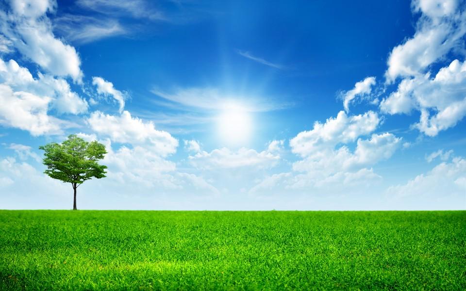 背景 壁纸 草原 风景 天空 桌面 960_600
