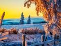 冬季的雪唯美意境壁纸