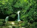 绝美瀑布风景高清桌面壁纸