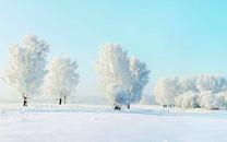 高清宽屏雪景壁纸图片