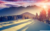唯美的雪高清壁纸