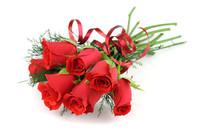 妖艳红玫瑰爱的告白壁纸