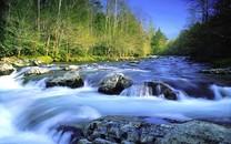溪水河流高清桌面壁纸
