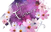 浪漫简约花卉信纸背景壁纸
