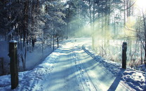 白雪皑皑的景色壁纸
