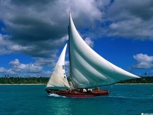安卓高清 风景 加勒比海手机壁纸
