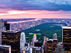 安卓纽约 中央公园 风景手机壁纸