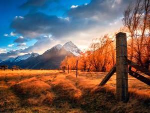 安卓景色 秋天手机壁纸