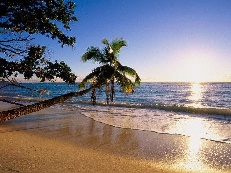 安卓热带 岛屿 海滩 高清 风景手机壁纸