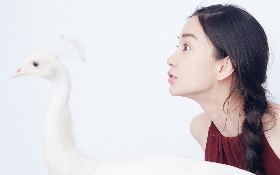 杨颖和动物图片