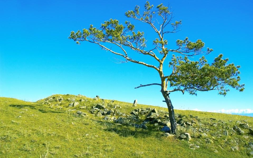 电脑壁纸 风景壁纸 西伯利亚自然风光桌面壁纸下载