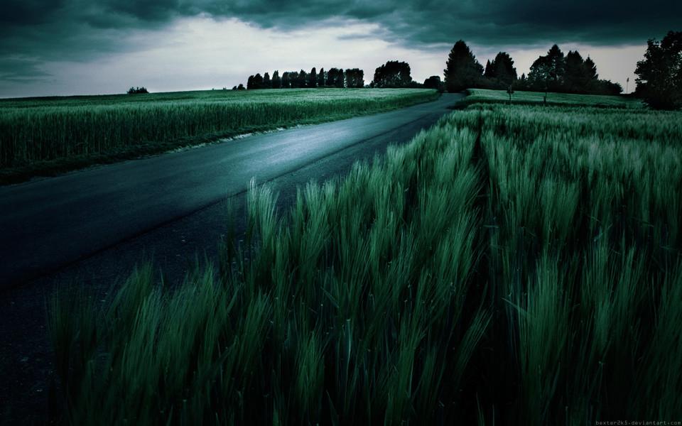 暗色调风景随拍高清桌面壁纸