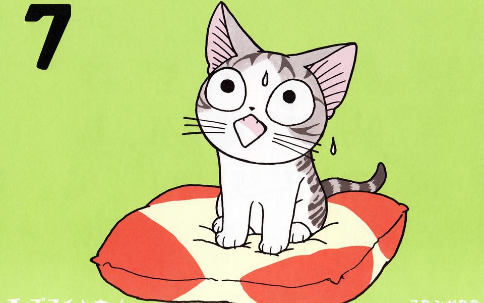 电脑壁纸 甜甜私房猫/起司猫壁纸 甜甜私房猫12张可爱模样高清壁纸
