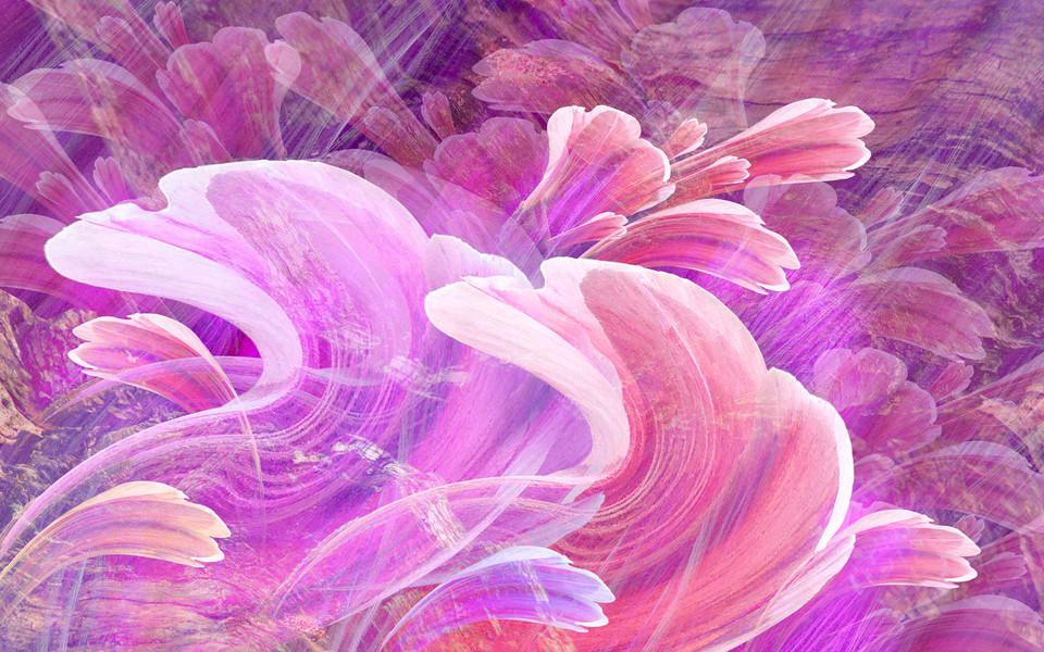 笔记本壁纸 创意壁纸 手绘鲜花精美桌面壁纸下载