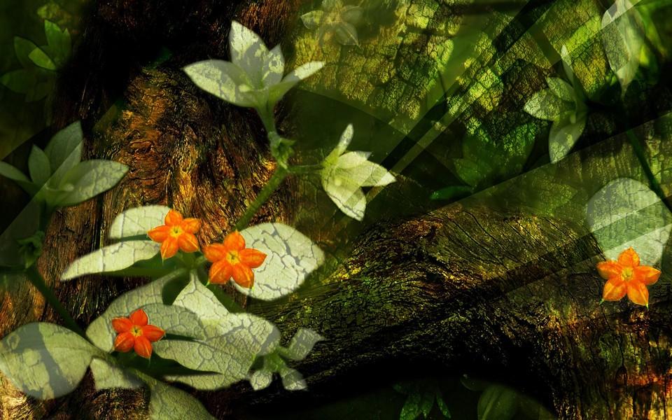 植物护眼桌面壁纸