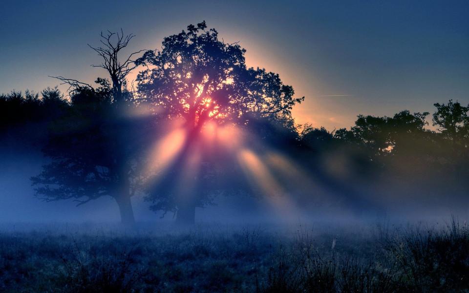 电脑壁纸 自然风景壁纸 清晨的雾高清桌面壁纸下载   (5/15) 小箭头图