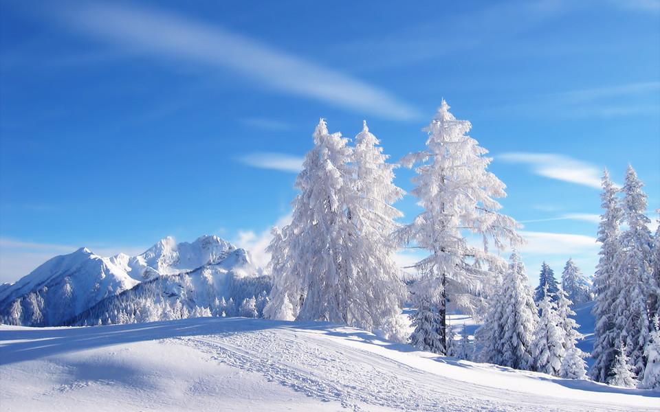 电脑壁纸 雪景壁纸 冬季高清雪景壁纸桌面下载   (5/12) 小箭头图标亲