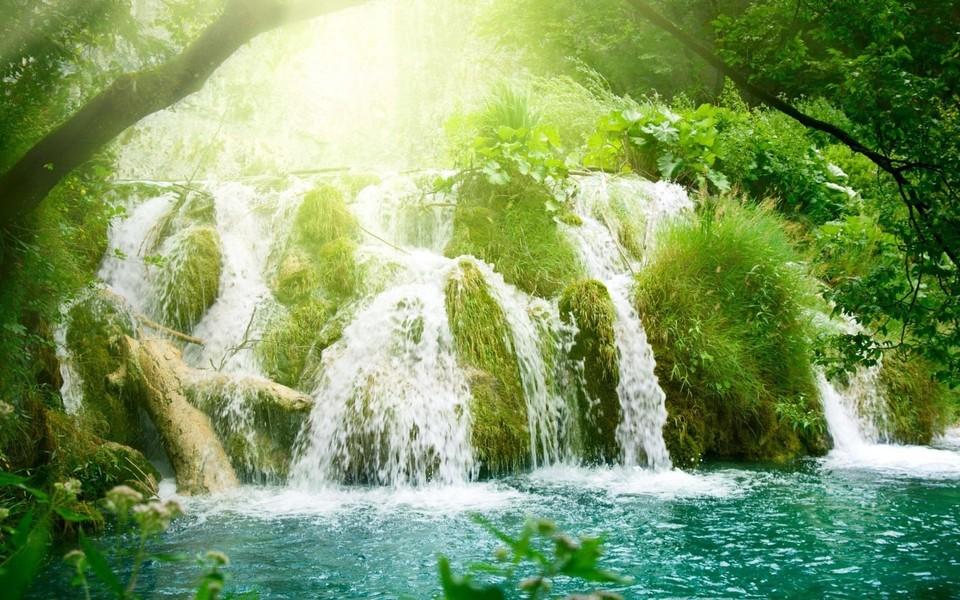 笔记本壁纸 自然风景壁纸 绿色壁纸高清桌面下载