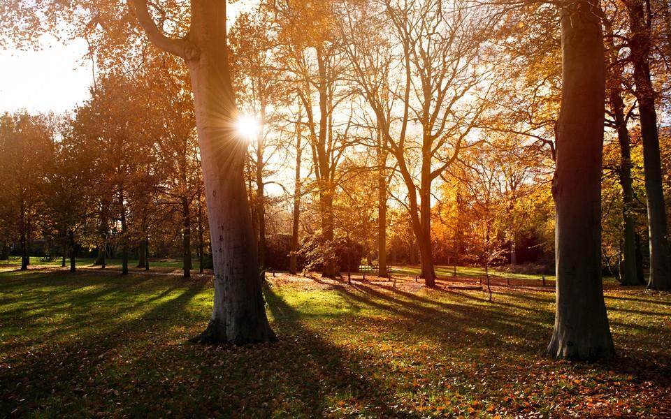 电脑壁纸 自然风景壁纸 幽静的自然景色高清壁纸下载   (10/11) 小