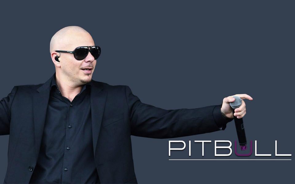 皮普保罗pitbull高清壁纸