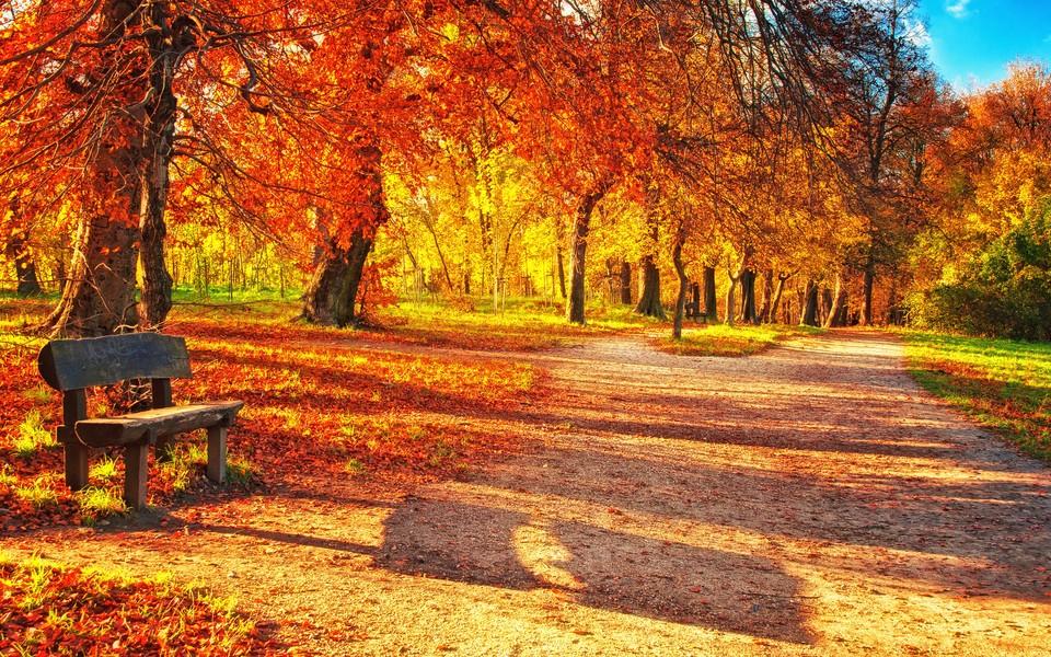 电脑壁纸 唯美意境壁纸 秋天风景壁纸大全下载   (11/12) 小箭头图标