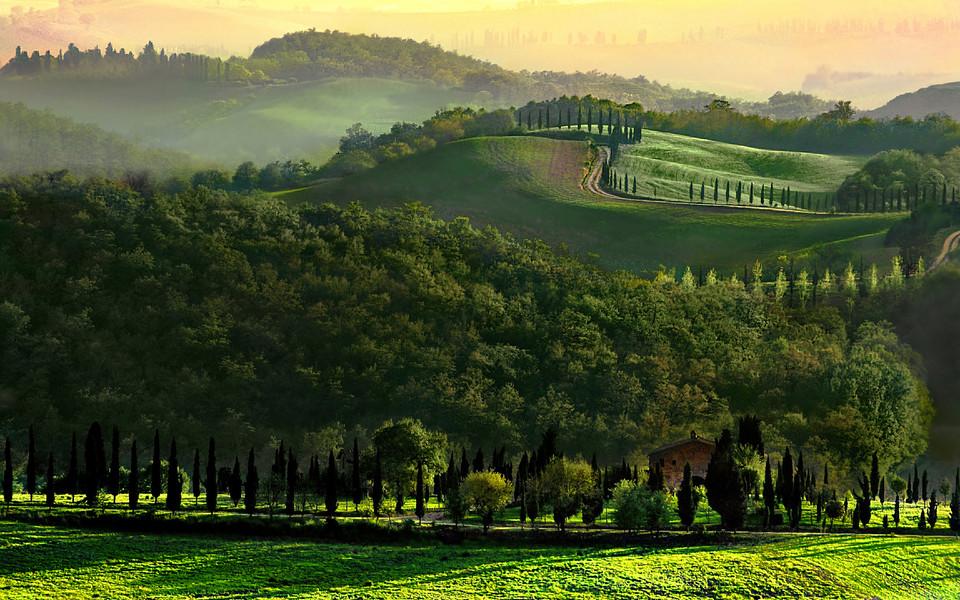 电脑壁纸 自然风景壁纸 乡村绿色壁纸图片下载