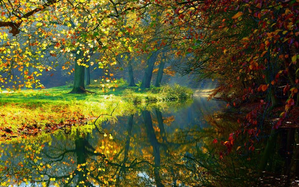电脑壁纸 自然风景壁纸 绿色护眼壁纸宽屏图片下载
