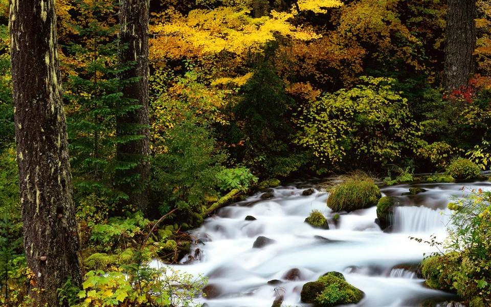 笔记本壁纸 自然风景壁纸 溪水河流高清桌面壁纸下载