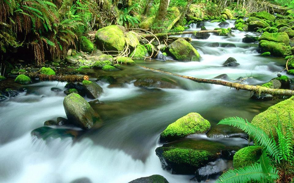 ipad壁纸 自然风景壁纸 溪水河流高清ipad壁纸下载