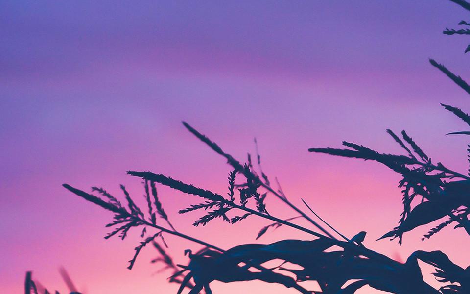 ipad壁纸 自然风景壁纸 夏末秋初自然风光摄影ipad壁纸下载   壁纸