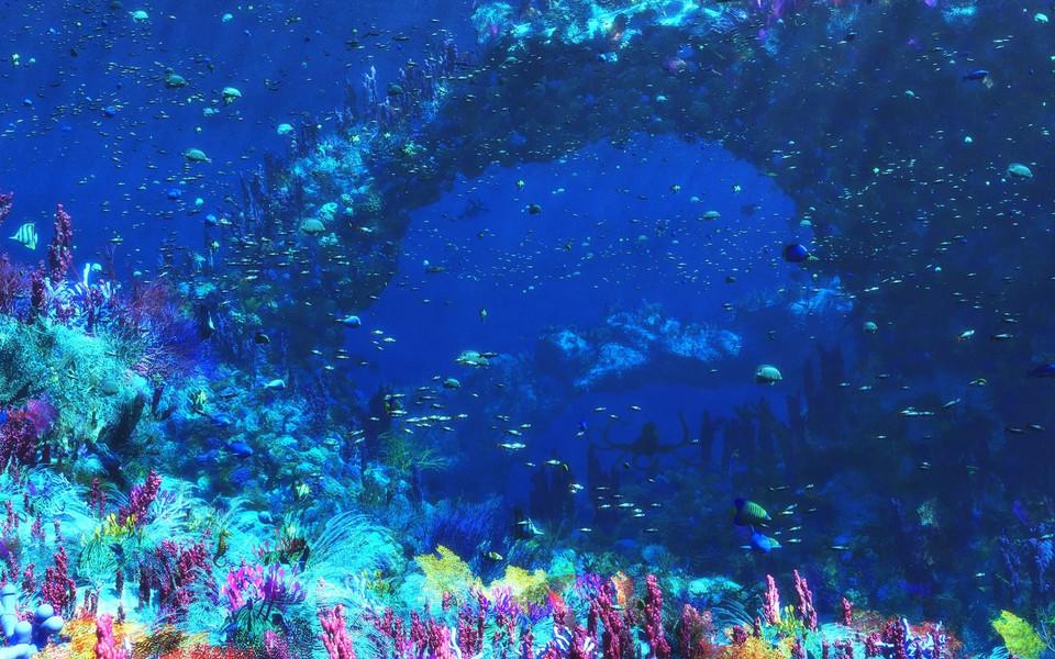 海底世界唯美壁纸