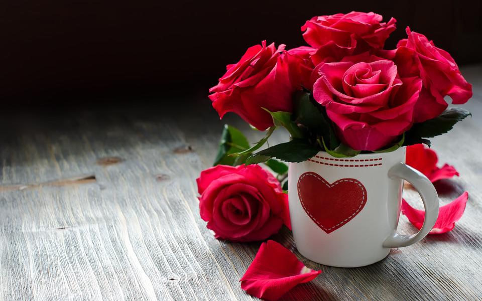 唯美简约花卉壁纸桌面